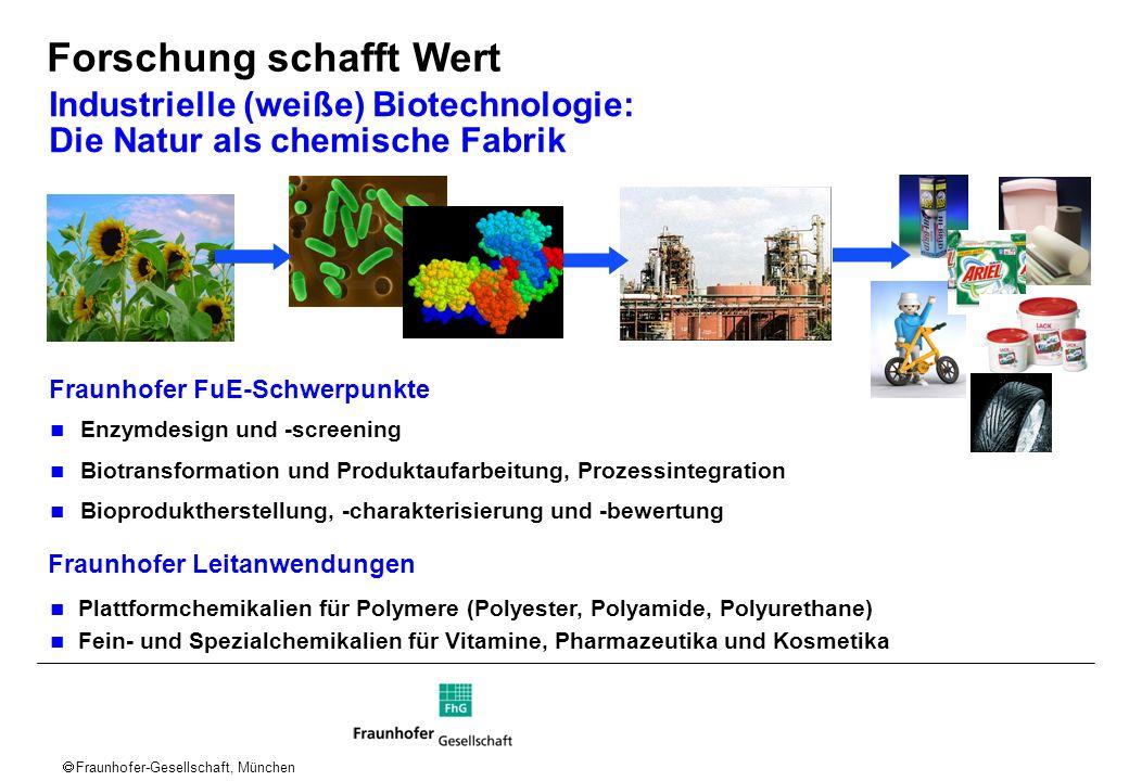 Fraunhofer-Gesellschaft, München Industrielle (weiße) Biotechnologie: Die Natur als chemische Fabrik Fraunhofer FuE-Schwerpunkte Enzymdesign und -scre