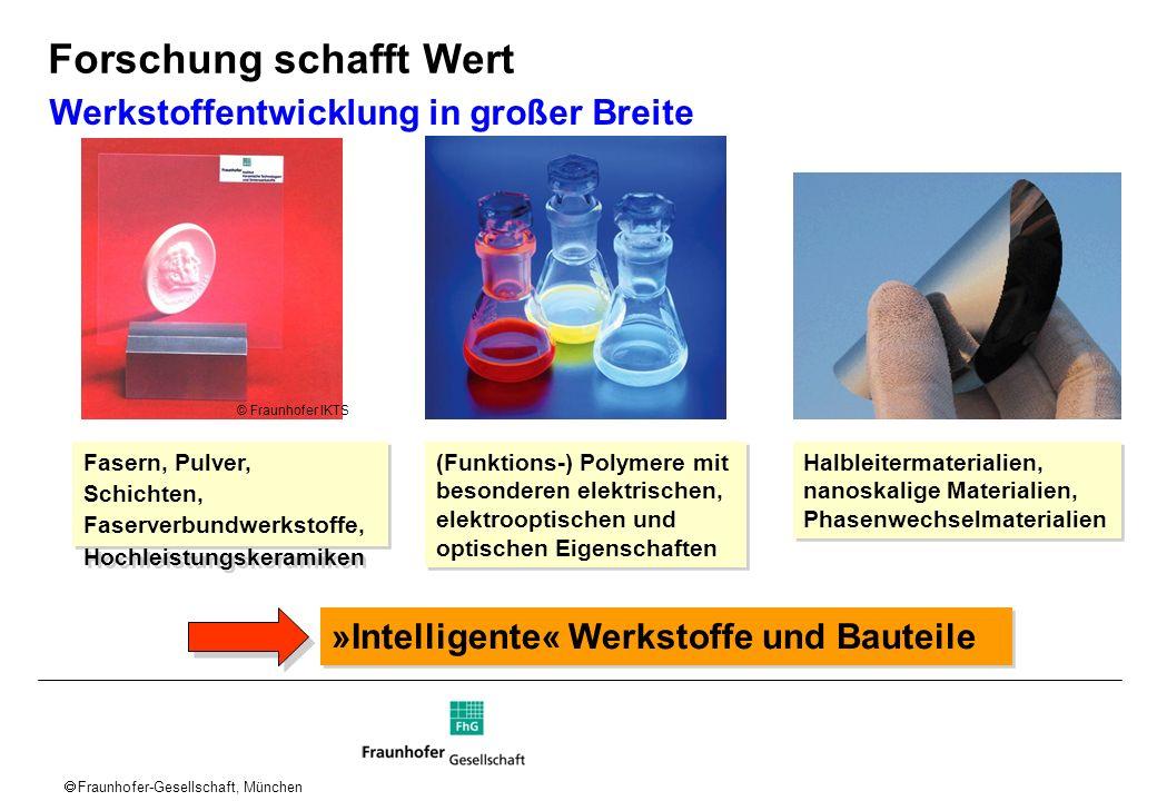 Fraunhofer-Gesellschaft, München (Funktions-) Polymere mit besonderen elektrischen, elektrooptischen und optischen Eigenschaften Werkstoffentwicklung