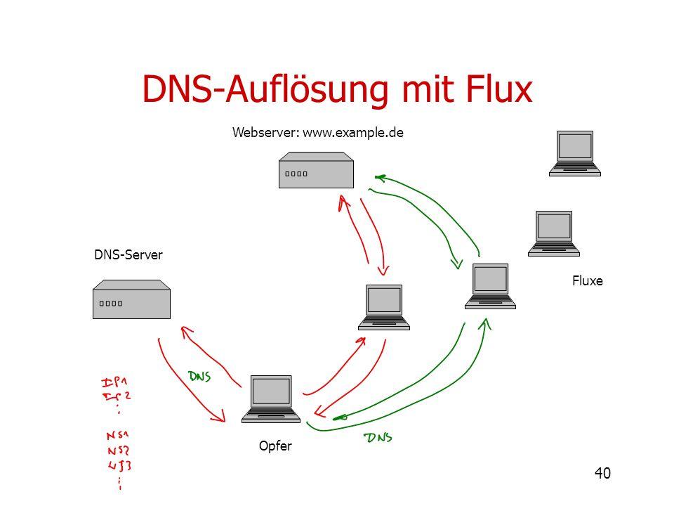 40 DNS-Auflösung mit Flux Webserver: www.example.de DNS-Server Fluxe Opfer