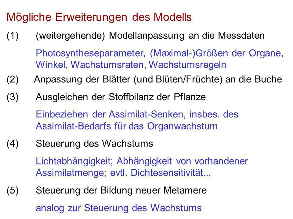 Mögliche Erweiterungen des Modells (1)(weitergehende) Modellanpassung an die Messdaten Photosyntheseparameter, (Maximal-)Größen der Organe, Winkel, Wachstumsraten, Wachstumsregeln (2) Anpassung der Blätter (und Blüten/Früchte) an die Buche (3)Ausgleichen der Stoffbilanz der Pflanze Einbeziehen der Assimilat-Senken, insbes.