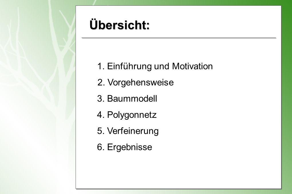 Übersicht: 1.Einführung und Motivation 2. Vorgehensweise 3.