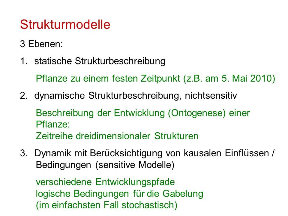 Strukturmodelle 3 Ebenen: 1.statische Strukturbeschreibung Pflanze zu einem festen Zeitpunkt (z.B. am 5. Mai 2010) 2.dynamische Strukturbeschreibung,