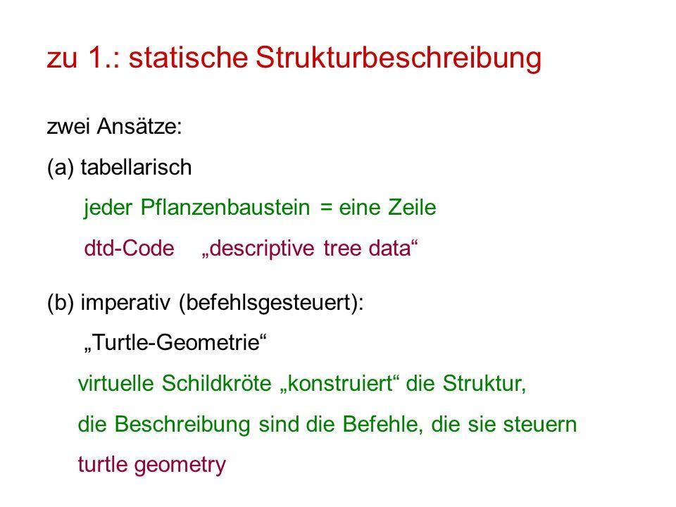 zu 1.: statische Strukturbeschreibung zwei Ansätze: (a)tabellarisch jeder Pflanzenbaustein = eine Zeile dtd-Code descriptive tree data (b) imperativ (
