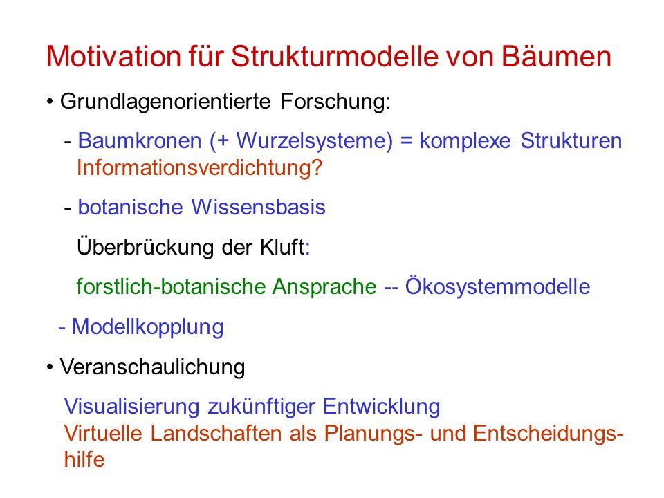Motivation für Strukturmodelle von Bäumen Grundlagenorientierte Forschung: - Baumkronen (+ Wurzelsysteme) = komplexe Strukturen Informationsverdichtun
