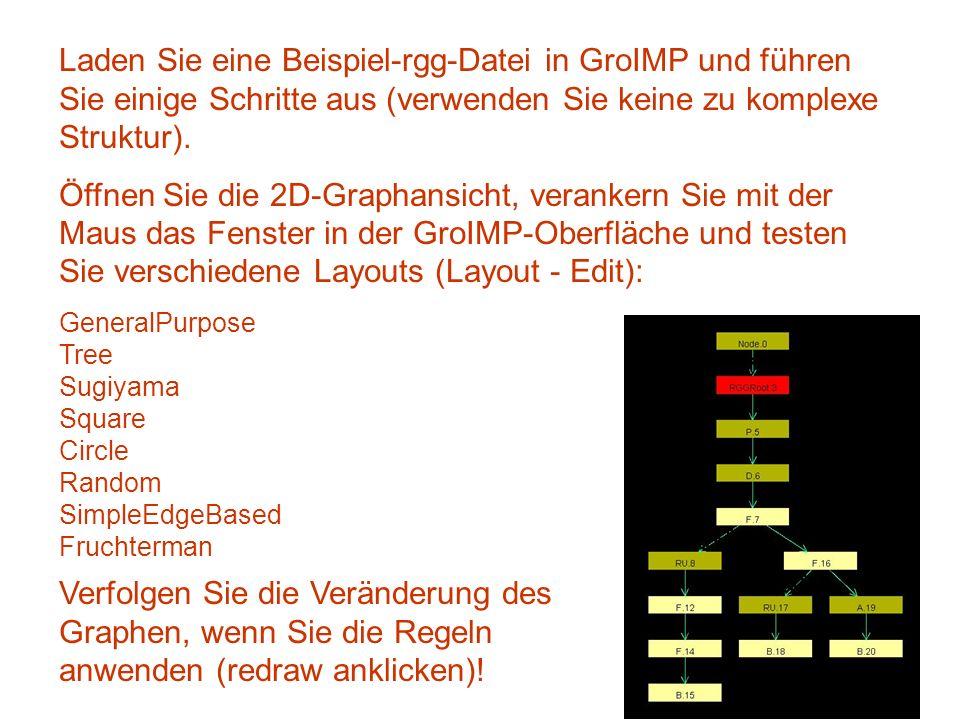 Laden Sie eine Beispiel-rgg-Datei in GroIMP und führen Sie einige Schritte aus (verwenden Sie keine zu komplexe Struktur).
