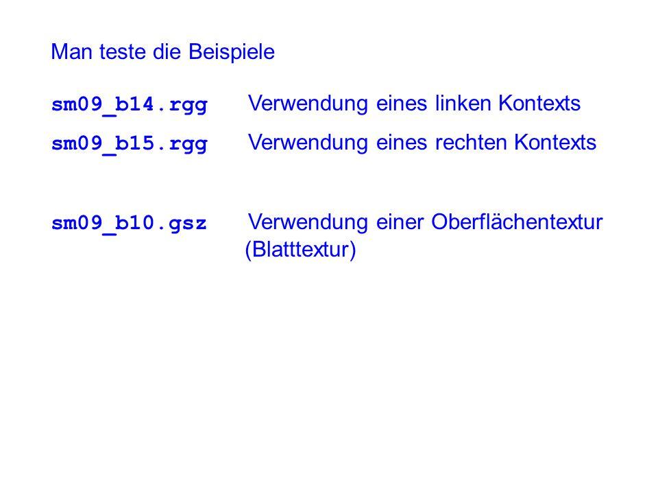 Man teste die Beispiele sm09_b14.rgg Verwendung eines linken Kontexts sm09_b15.rgg Verwendung eines rechten Kontexts sm09_b10.gsz Verwendung einer Oberflächentextur (Blatttextur)