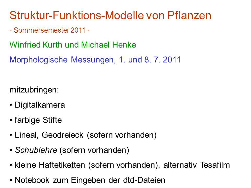 Struktur-Funktions-Modelle von Pflanzen - Sommersemester 2011 - Winfried Kurth und Michael Henke Morphologische Messungen, 1. und 8. 7. 2011 mitzubrin