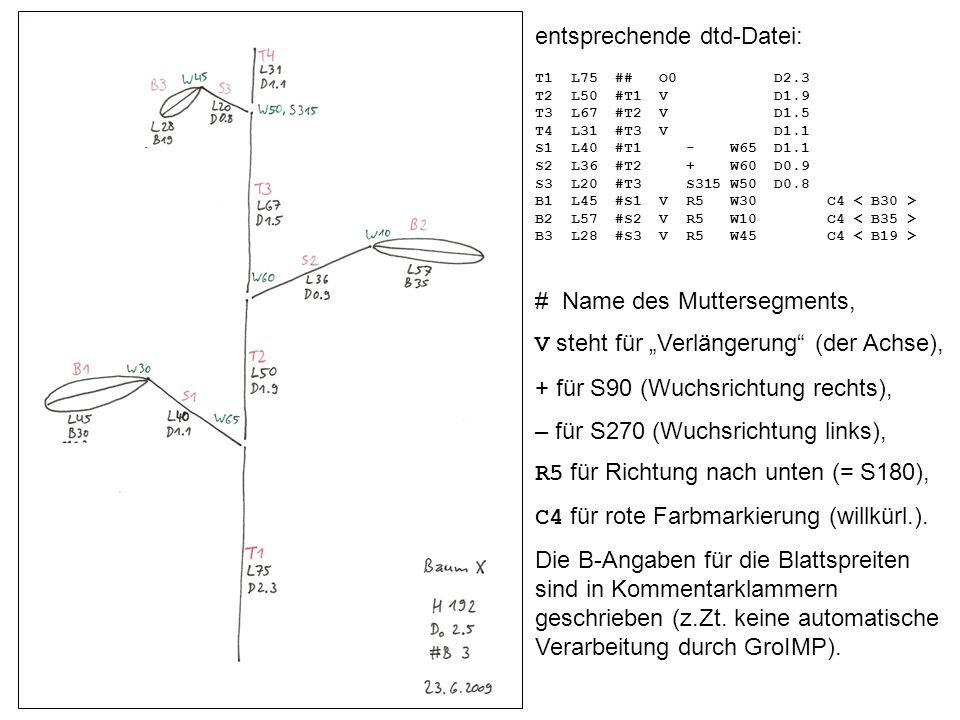 entsprechende dtd-Datei: T1 L75 ## O0 D2.3 T2 L50 #T1 V D1.9 T3 L67 #T2 V D1.5 T4 L31 #T3 V D1.1 S1 L40 #T1 - W65 D1.1 S2 L36 #T2 + W60 D0.9 S3 L20 #T3 S315 W50 D0.8 B1 L45 #S1 V R5 W30 C4 B2 L57 #S2 V R5 W10 C4 B3 L28 #S3 V R5 W45 C4 # Name des Muttersegments, V steht für Verlängerung (der Achse), + für S90 (Wuchsrichtung rechts), – für S270 (Wuchsrichtung links), R5 für Richtung nach unten (= S180), C4 für rote Farbmarkierung (willkürl.).
