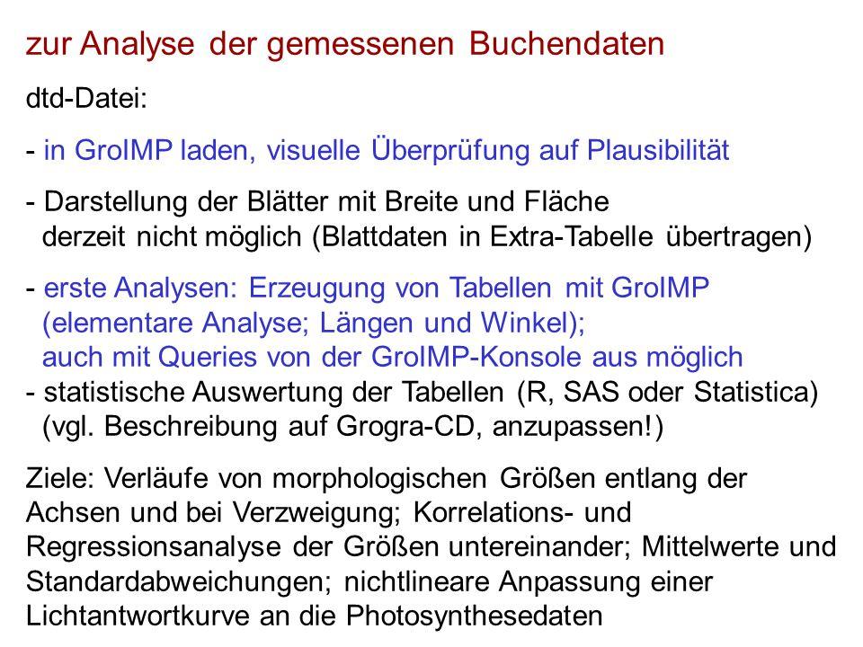 zur Analyse der gemessenen Buchendaten dtd-Datei: - in GroIMP laden, visuelle Überprüfung auf Plausibilität - Darstellung der Blätter mit Breite und F