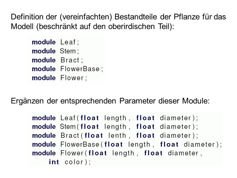 Definition der (vereinfachten) Bestandteile der Pflanze für das Modell (beschränkt auf den oberirdischen Teil): Ergänzen der entsprechenden Parameter