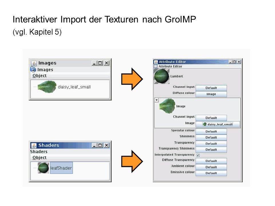 Interaktiver Import der Texturen nach GroIMP (vgl. Kapitel 5)