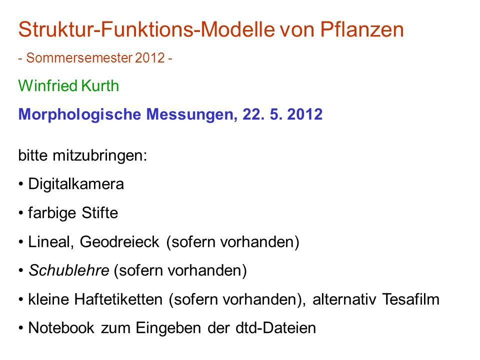 Struktur-Funktions-Modelle von Pflanzen - Sommersemester 2012 - Winfried Kurth Morphologische Messungen, 22. 5. 2012 bitte mitzubringen: Digitalkamera