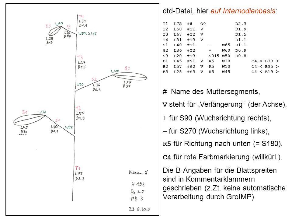 dtd-Datei, hier auf Internodienbasis: T1 L75 ## O0 D2.3 T2 L50 #T1 V D1.9 T3 L67 #T2 V D1.5 T4 L31 #T3 V D1.1 S1 L40 #T1 - W65 D1.1 S2 L36 #T2 + W60 D0.9 S3 L20 #T3 S315 W50 D0.8 B1 L45 #S1 V R5 W30 C4 B2 L57 #S2 V R5 W10 C4 B3 L28 #S3 V R5 W45 C4 # Name des Muttersegments, V steht für Verlängerung (der Achse), + für S90 (Wuchsrichtung rechts), – für S270 (Wuchsrichtung links), R5 für Richtung nach unten (= S180), C4 für rote Farbmarkierung (willkürl.).