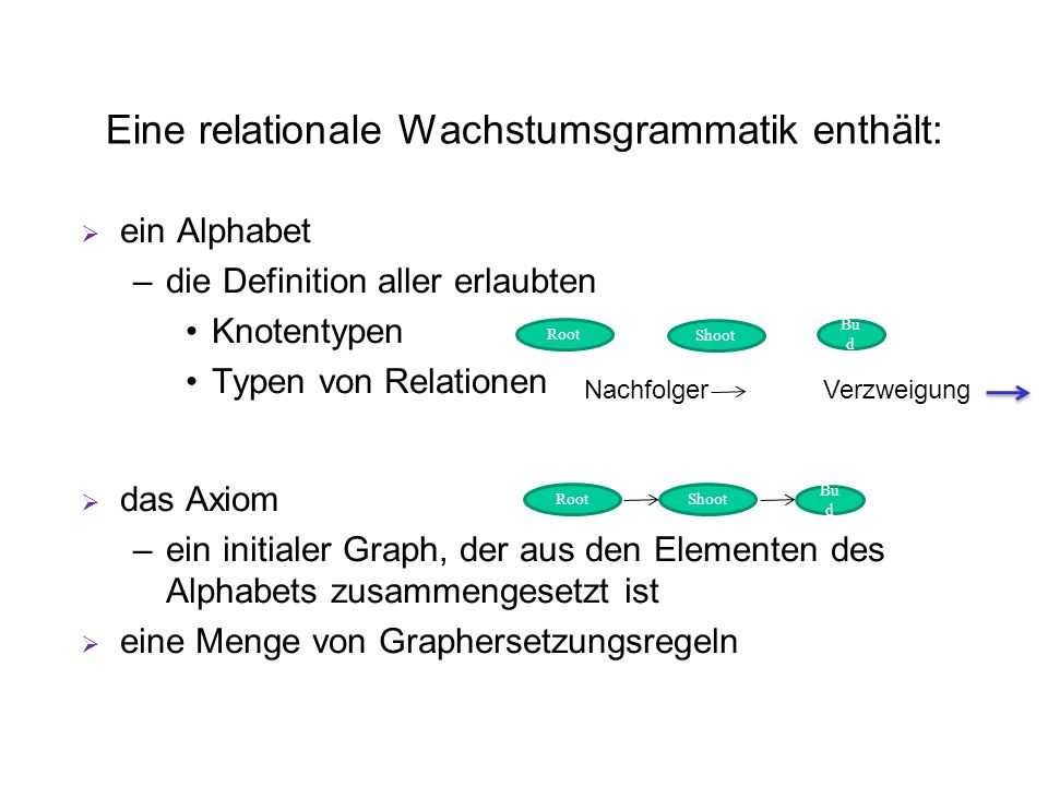 Eine relationale Wachstumsgrammatik enthält: ein Alphabet –die Definition aller erlaubten Knotentypen Typen von Relationen das Axiom –ein initialer Graph, der aus den Elementen des Alphabets zusammengesetzt ist eine Menge von Graphersetzungsregeln Shoot Root Bu d RootShoot Bu d Nachfolger Verzweigung