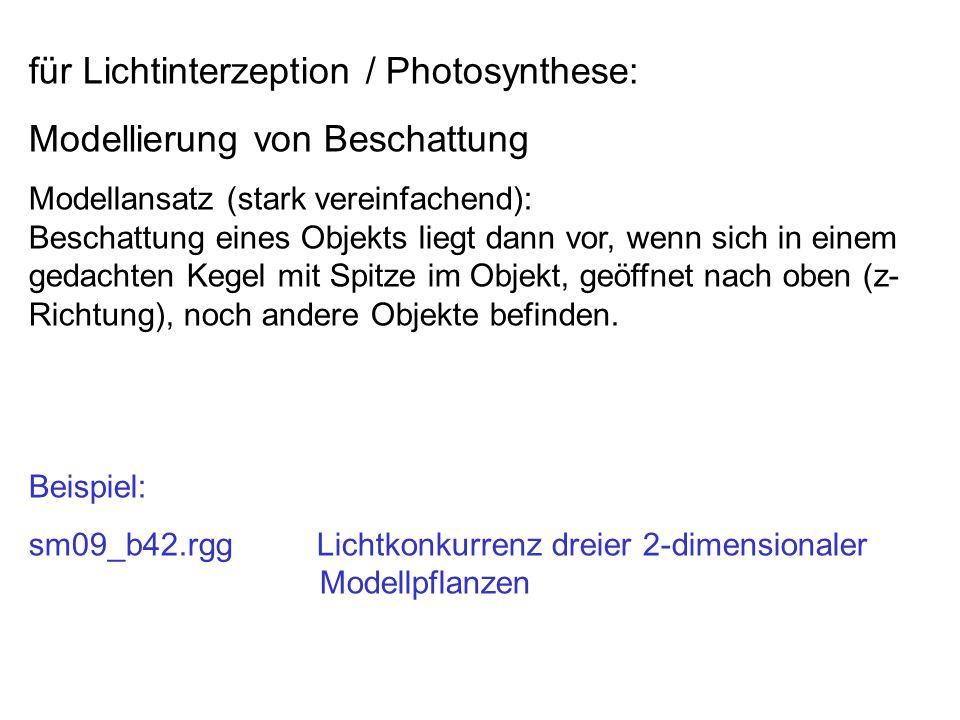 für Lichtinterzeption / Photosynthese: Modellierung von Beschattung Modellansatz (stark vereinfachend): Beschattung eines Objekts liegt dann vor, wenn sich in einem gedachten Kegel mit Spitze im Objekt, geöffnet nach oben (z- Richtung), noch andere Objekte befinden.
