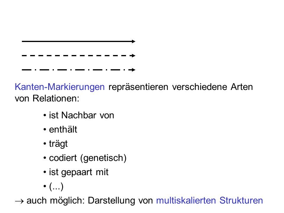 Kanten-Markierungen repräsentieren verschiedene Arten von Relationen: ist Nachbar von enthält trägt codiert (genetisch) ist gepaart mit (...) auch möglich: Darstellung von multiskalierten Strukturen