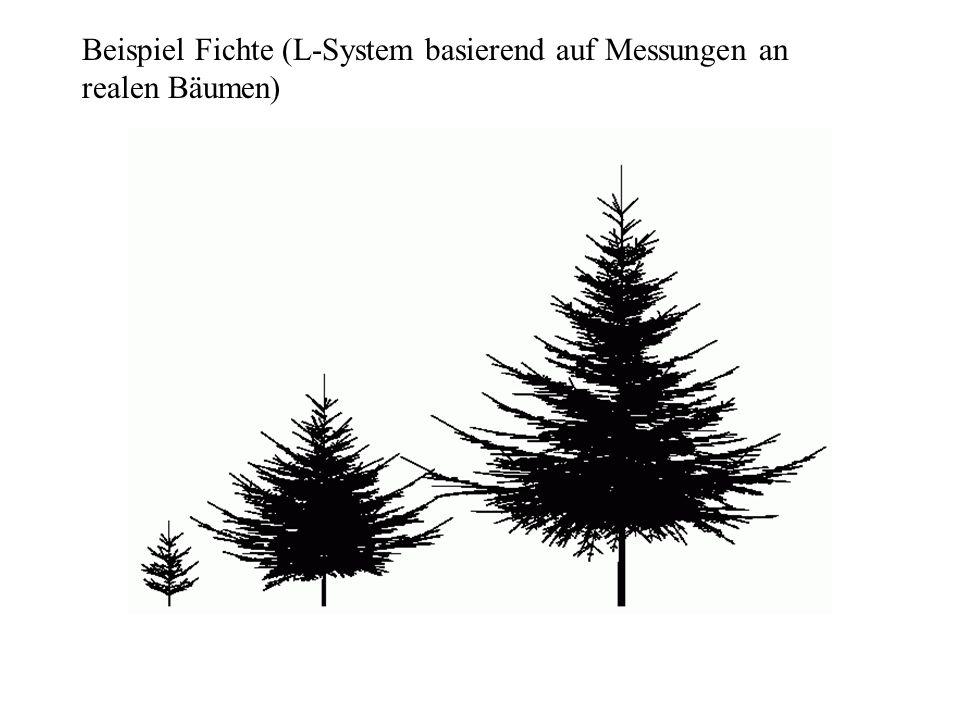 Beispiel Fichte (L-System basierend auf Messungen an realen Bäumen)