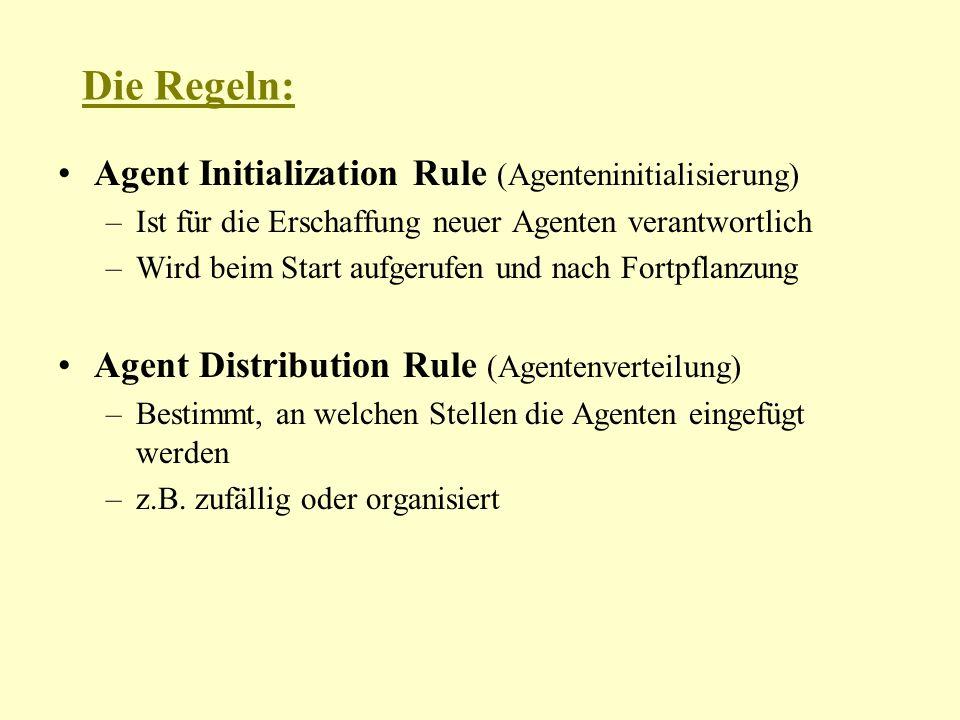 Die Regeln: Agent Initialization Rule (Agenteninitialisierung) –Ist für die Erschaffung neuer Agenten verantwortlich –Wird beim Start aufgerufen und nach Fortpflanzung Agent Distribution Rule (Agentenverteilung) –Bestimmt, an welchen Stellen die Agenten eingefügt werden –z.B.