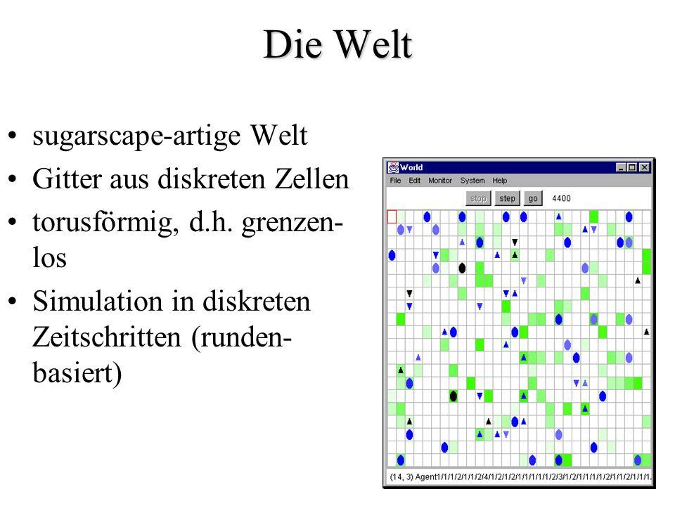 Die Welt sugarscape-artige Welt Gitter aus diskreten Zellen torusförmig, d.h. grenzen- los Simulation in diskreten Zeitschritten (runden- basiert)