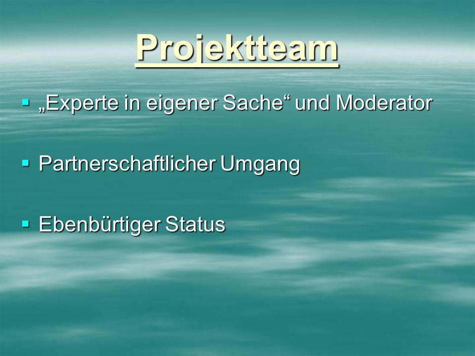 Projektteam Experte in eigener Sache und Moderator Experte in eigener Sache und Moderator Partnerschaftlicher Umgang Partnerschaftlicher Umgang Ebenbü