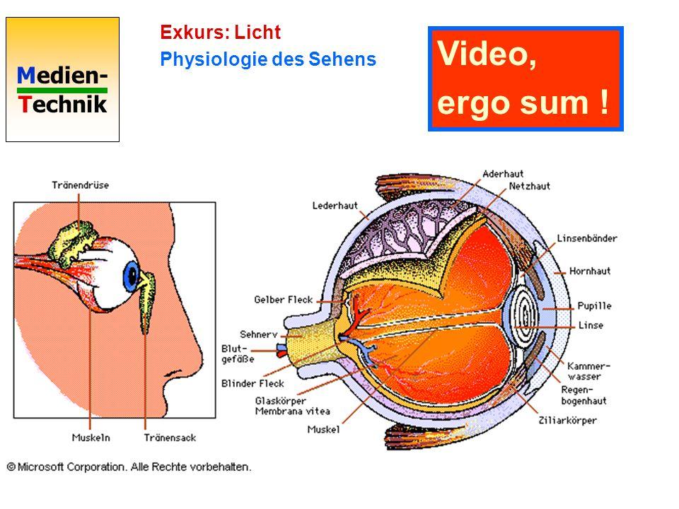 Medien- Technik Exkurs: Licht Physiologie des Sehens Video, ergo sum !