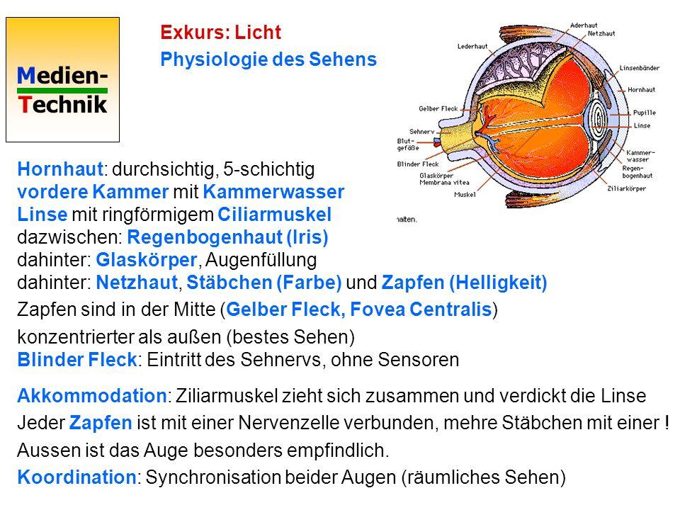 Medien- Technik Exkurs: Licht Physiologie des Sehens Hornhaut: durchsichtig, 5-schichtig vordere Kammer mit Kammerwasser Linse mit ringförmigem Ciliarmuskel dazwischen: Regenbogenhaut (Iris) dahinter: Glaskörper, Augenfüllung dahinter: Netzhaut, Stäbchen (Farbe) und Zapfen (Helligkeit) Zapfen sind in der Mitte (Gelber Fleck, Fovea Centralis) konzentrierter als außen (bestes Sehen) Blinder Fleck: Eintritt des Sehnervs, ohne Sensoren Akkommodation: Ziliarmuskel zieht sich zusammen und verdickt die Linse Jeder Zapfen ist mit einer Nervenzelle verbunden, mehre Stäbchen mit einer .