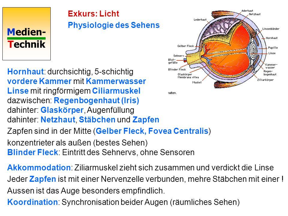 Medien- Technik Exkurs: Licht Physiologie des Sehens Hornhaut: durchsichtig, 5-schichtig vordere Kammer mit Kammerwasser Linse mit ringförmigem Ciliar