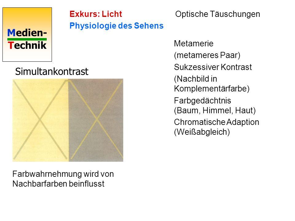 Medien- Technik Simultankontrast Metamerie (metameres Paar) Sukzessiver Kontrast (Nachbild in Komplementärfarbe) Farbgedächtnis (Baum, Himmel, Haut) C