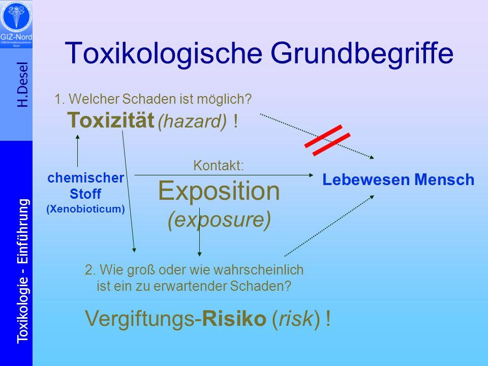 H.Desel Toxikologie - Einführung Chemische Cancerogenese Epigenetische Wirkungen (Promotion): z.