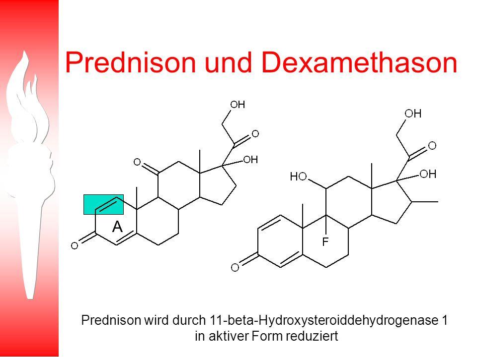 Prednison und Dexamethason A Prednison wird durch 11-beta-Hydroxysteroiddehydrogenase 1 in aktiver Form reduziert
