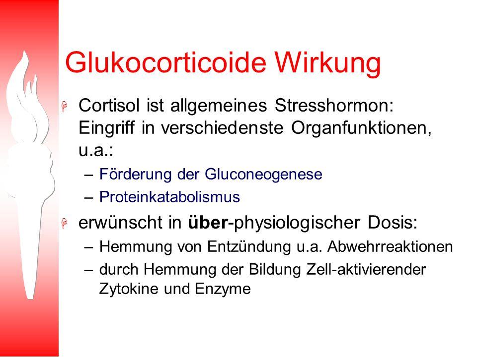 Glukocorticoide Wirkung H Cortisol ist allgemeines Stresshormon: Eingriff in verschiedenste Organfunktionen, u.a.: –Förderung der Gluconeogenese –Prot