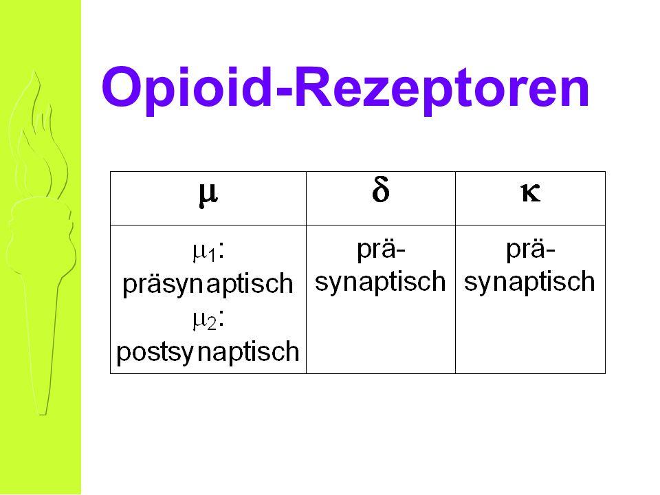 Opioid-Rezeptoren