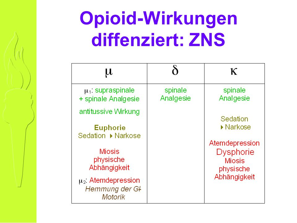 Opioid-Wirkungen diffenziert: ZNS