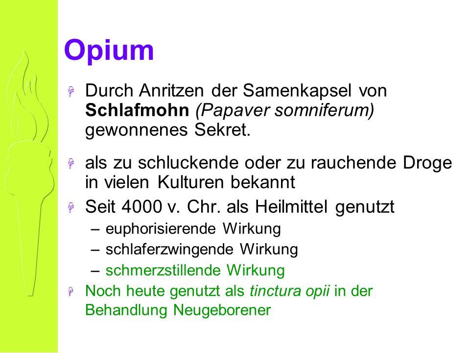 Opium H Durch Anritzen der Samenkapsel von Schlafmohn (Papaver somniferum) gewonnenes Sekret.