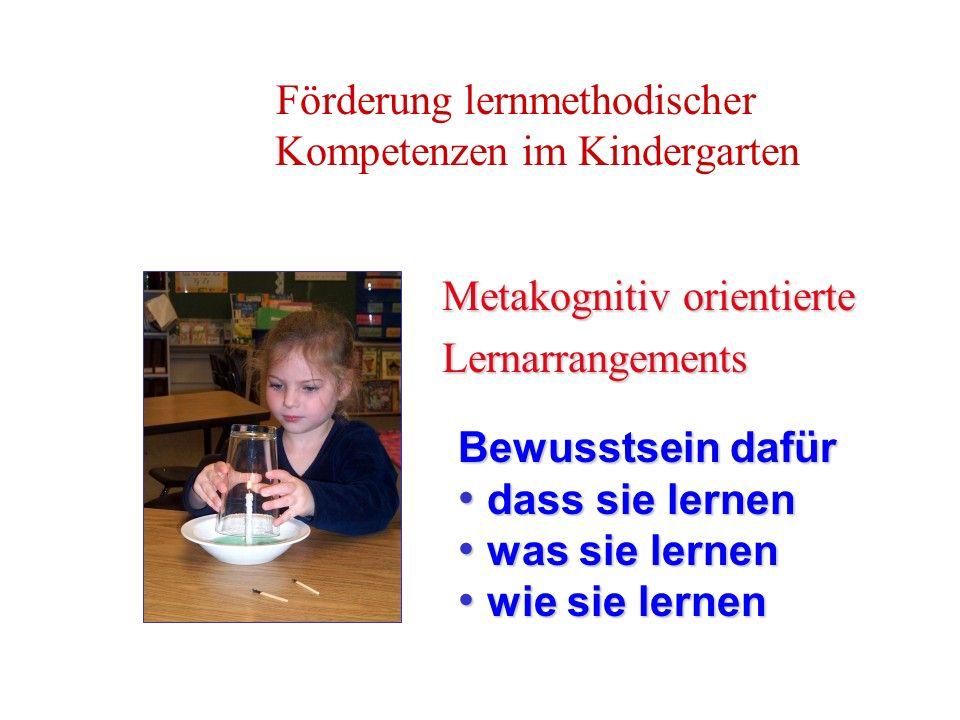 Förderung lernmethodischer Kompetenzen im Kindergarten Metakognitiv orientierte Lernarrangements Bewusstsein dafür dass sie lernen dass sie lernen was