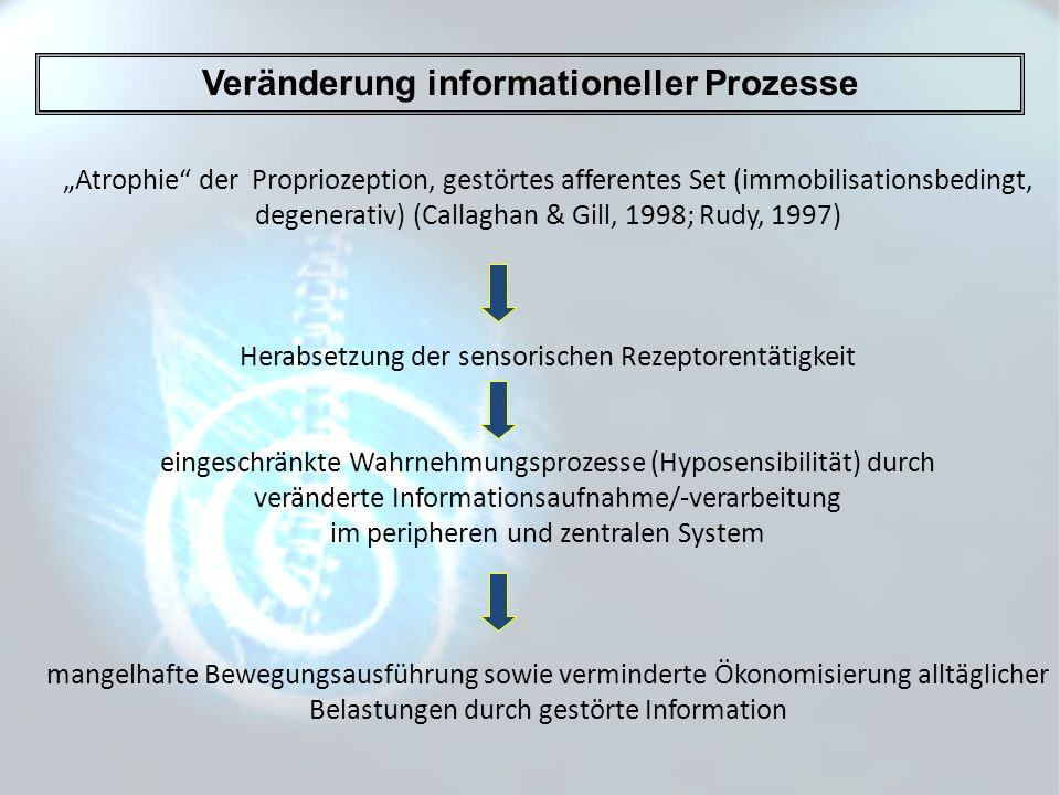 Veränderung informationeller Prozesse Atrophie der Propriozeption, gestörtes afferentes Set (immobilisationsbedingt, degenerativ) (Callaghan & Gill, 1