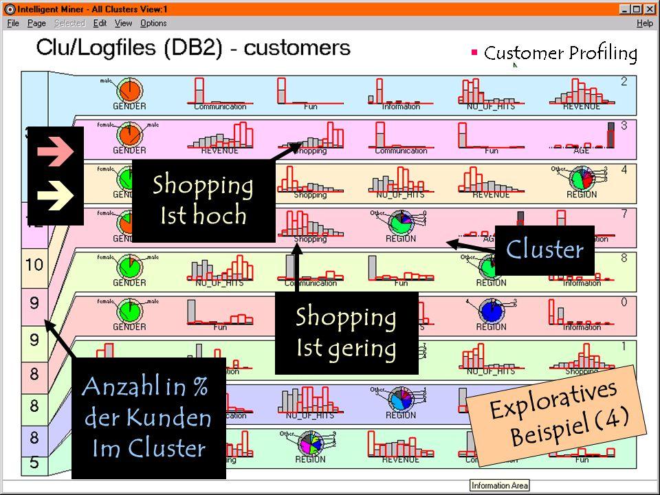 27. Februar 2001 Exploratives Beispiel (4) Anzahl in % der Kunden Im Cluster Cluster Shopping Ist gering Shopping Ist hoch