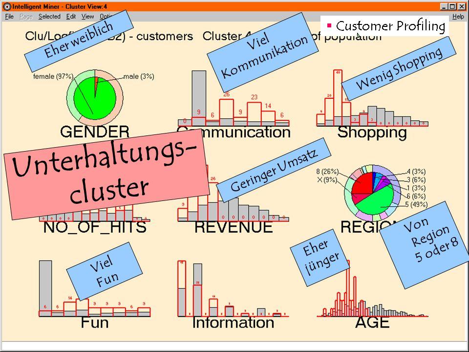 27. Februar 2001 Viel Kommunikation Viel Fun Eher jünger Eher weiblich Geringer Umsatz Wenig Shopping Von Region 5 oder 8 Unterhaltungs- cluster