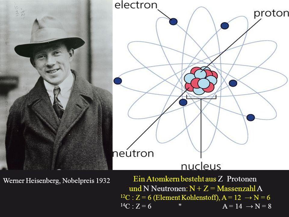 Ein Atomkern besteht aus positiv geladenen Protonen und ungeladenen Neutronen Ein freies Neutron zerfällt in ein Proton, ein Elektron und ein (Anti) Neutrino, da es um 0, 000 000 000 000 000 000 000 000 000 02 g schwerer als ein Proton ist Ein freies Proton kann nicht zerfallen 1.