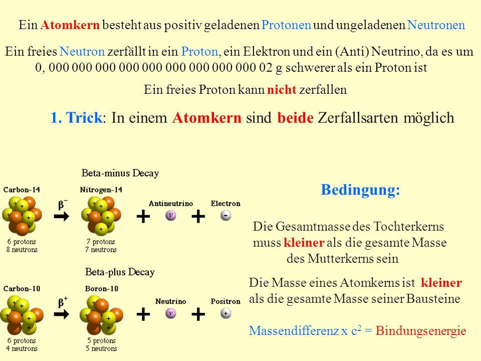 Isotope und Stabilität von Atomkernen Isotope und Stabilität von Atomkernen Hat ein Atomkern zuviele Neutronen oder Protonen, kann eines davon zerfallen: n p + e - + Antineutrino ( β - - Zerfall ) p n + e + + Neutrino (β + -Zerfall) 3 H ( Z = 1, N = 2) 3 He + ( Z = 2, N = 1); A = 3