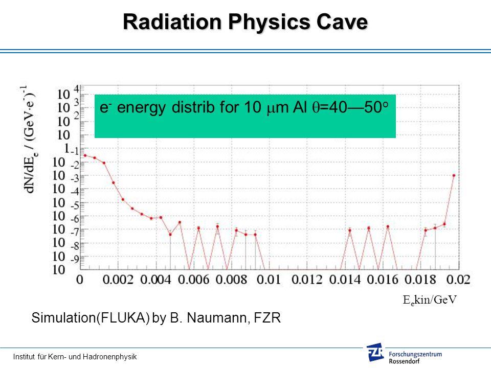 Radiation Physics Cave e - energy distrib for 10 m Al =4050 o E e kin/GeV Simulation(FLUKA) by B. Naumann, FZR