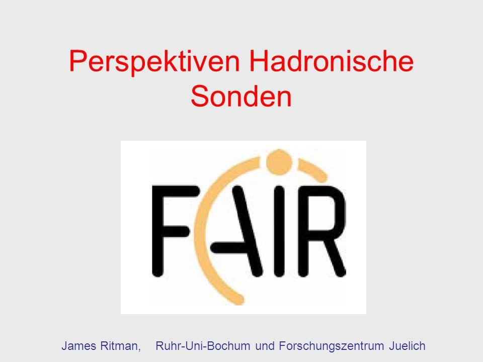 Perspektiven Hadronische Sonden James Ritman, Ruhr-Uni-Bochum und Forschungszentrum Juelich