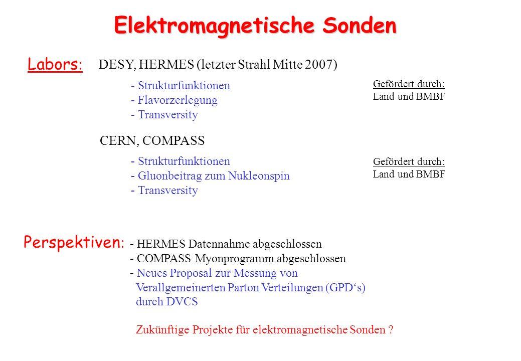 3-9 GeV Elektronen 3-9 GeV Positronen 30-225 GeV Protonen 15-100 GeV/n Ionen prebooster 12 GeV CEBAF Upgrade ELektron/Ionen Collider (ELIC) Projekt finanziert Start 2011 Zukünftiger Vorschlag Elektron Hadron Maschine in Europa??