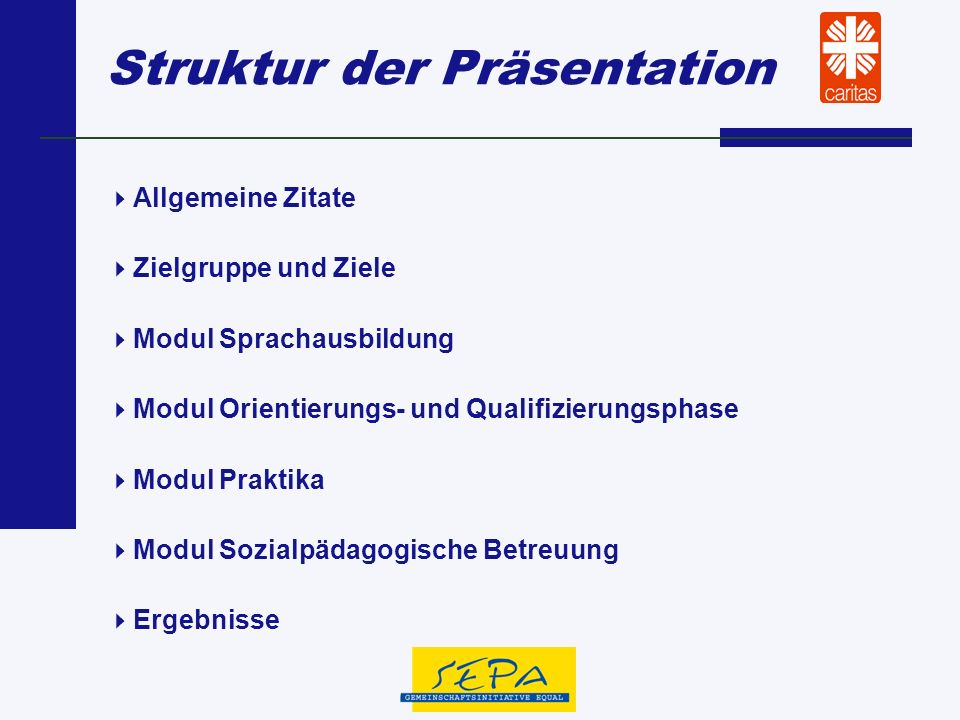 Struktur der Präsentation Allgemeine Zitate Zielgruppe und Ziele Modul Sprachausbildung Modul Orientierungs- und Qualifizierungsphase Modul Praktika M