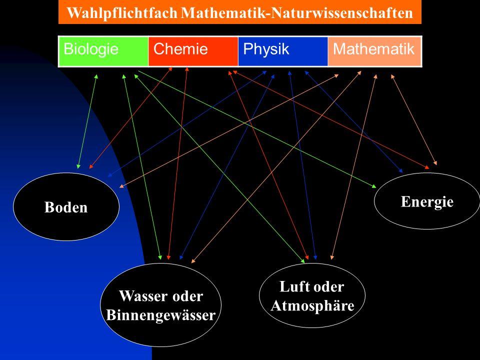 Zielsetzungen Heranführung an moderne mathematische und naturwissenschaftliche Arbeitsmethoden.
