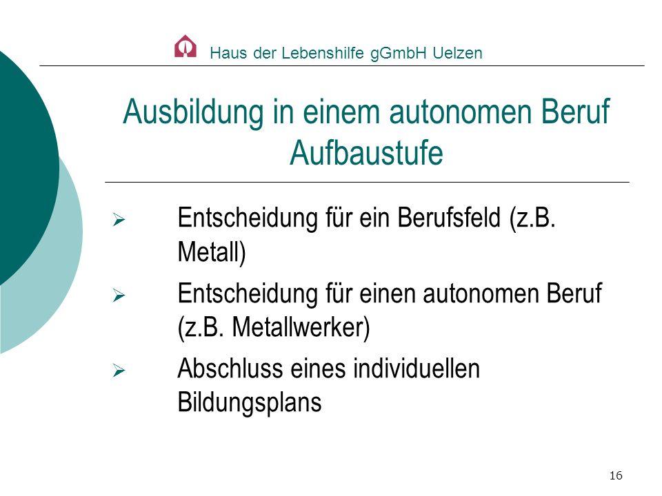16 Entscheidung für ein Berufsfeld (z.B. Metall) Entscheidung für einen autonomen Beruf (z.B. Metallwerker) Abschluss eines individuellen Bildungsplan