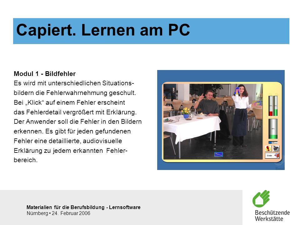 Materialien für die Berufsbildung - Lernsoftware Nürnberg 24. Februar 2006 Modul 1 - Bildfehler Es wird mit unterschiedlichen Situations- bildern die
