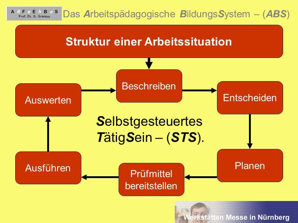 5 Das Arbeitspädagogische BildungsSystem – (ABS) Struktur einer Arbeitssituation Auswerten Beschreiben Entscheiden Planen Prüfmittel bereitstellen Aus
