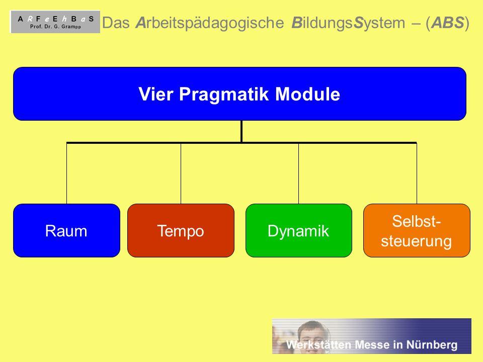 9 Das Arbeitspädagogische BildungsSystem – (ABS) Vier Pragmatik Module RaumTempoDynamik Selbst- steuerung