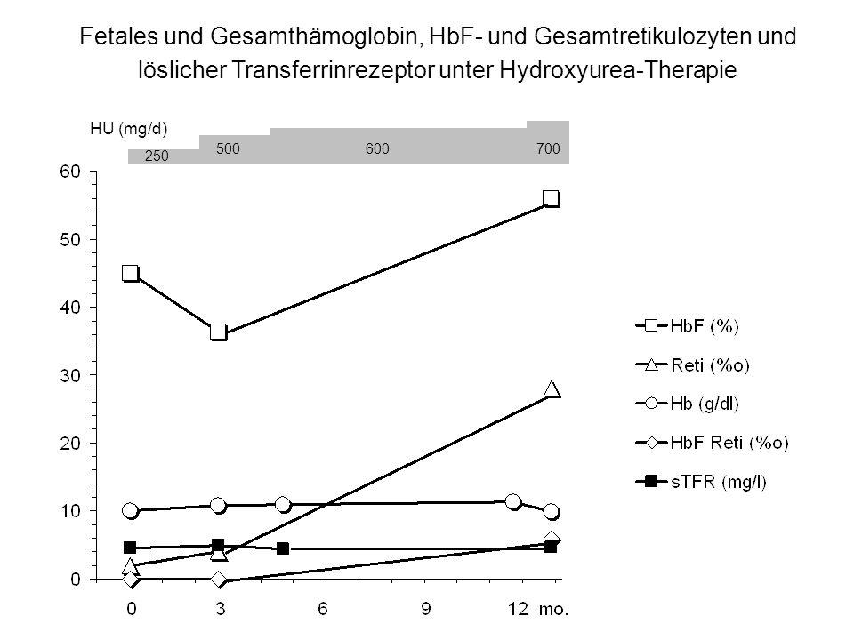 Fetales und Gesamthämoglobin, HbF- und Gesamtretikulozyten und löslicher Transferrinrezeptor unter Hydroxyurea-Therapie 250 500600700 HU (mg/d)